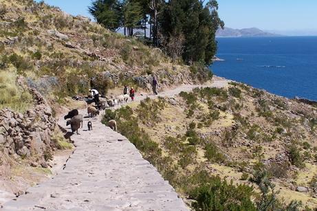 titicaca 4