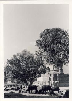 Kathmandu along the Vishnumati